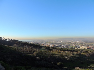 The view from Rhodes Memorial overlooking the city