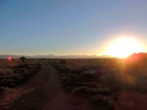 Sunrise outside Oudtshoorn (it put The Circle of Life in my head all day)