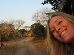 Giraffes! And me!