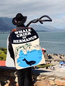 Ye Olde Whale Crier