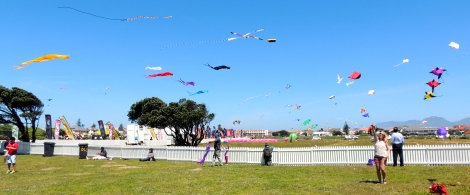 Flying Wind Spirit with all the international kites!