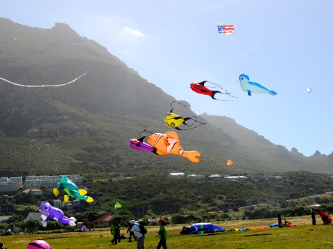 Some of the pro kites