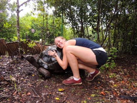 Tortoise hug!