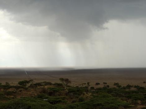 Rain over the Serengeti