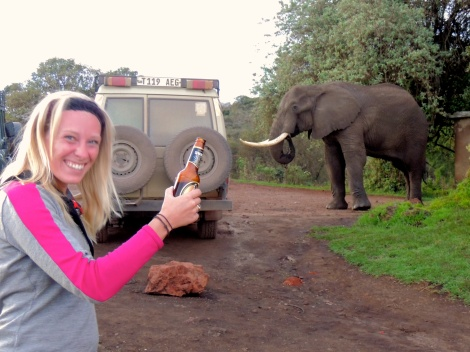Drinking with elephants